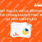 Mega China marketing report